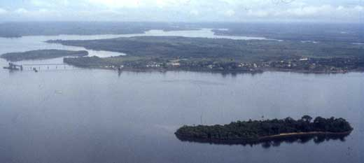 Aerial view of Bunce Island looking west (downriver)