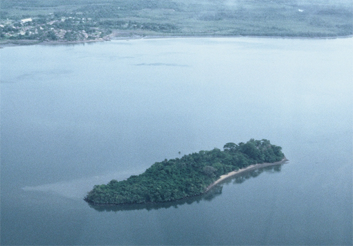 Bunce Island from the air, looking northwest.